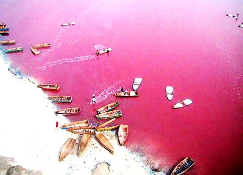 Pink Lake os Senegal
